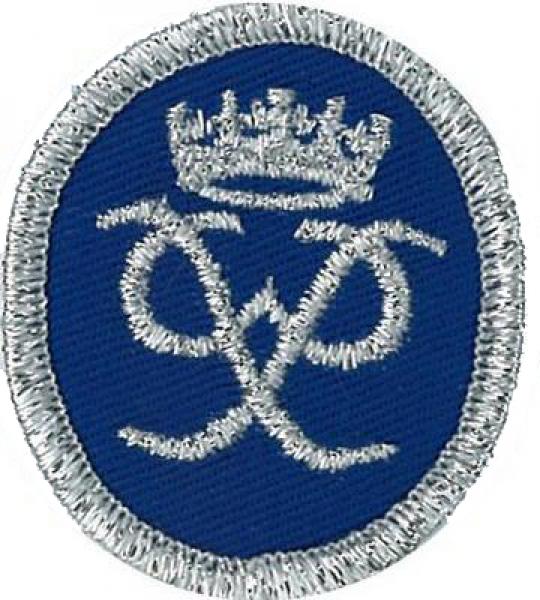 Duke of Edinburgh's Silver Award of Achievement badge